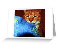 Leo's Blankie Greeting Card