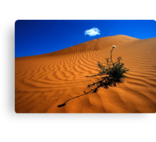 Perry Sand Dune Canvas Print