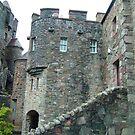 Eilean Donan Castle IV by Tom Gomez