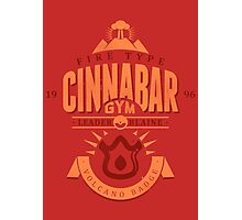 Cinnabar Gym Photographic Print