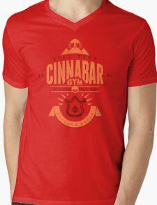 Cinnabar Gym Mens V-Neck T-Shirt