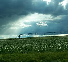 Beautiful Farm Land by heatherjo