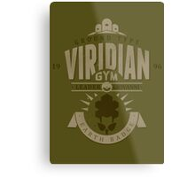 Viridian Gym Metal Print