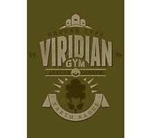 Viridian Gym Photographic Print