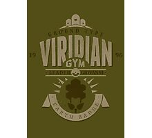 Viridian Gym Photographic Print