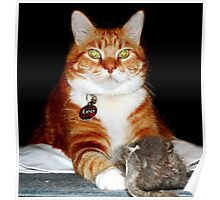Cat and Mouse Portrait Poster