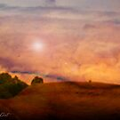 Riding into Sunset by Daniela M. Casalla