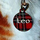 I Am Leo by Kristie Theobald