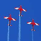 RAAF Roulettes by David Smith
