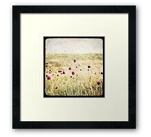 Paysages de l'île d'Houat #3 (Brittany, France) Framed Print