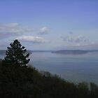 Over the Bluff to Puget Sound by Thomas Josiah Chappelle