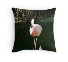 Would You. . .Be My Valentine? Throw Pillow