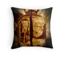 The Penny Jar Throw Pillow