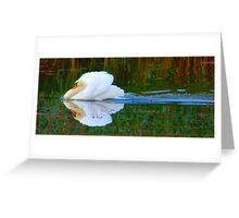 Cupids Arrow Greeting Card