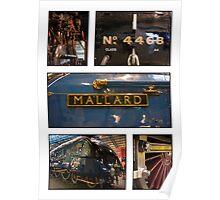 The Mighty Mallard Poster