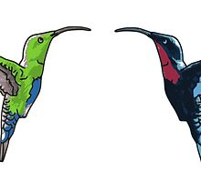 Two Hummingbirds by demipo