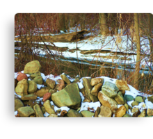 Stone Cold Creek Bank Canvas Print