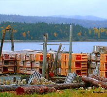 LOBSTER TRAPS by Madeline M  Allen