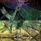 Dragon Eye 101 by Cassie Sitnik