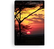Kenyan Sunset with trees in the foreground Canvas Print