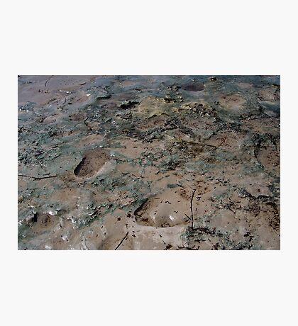 Mud Photographic Print