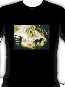 SUNRISE HORSE - Cowboy Country T-Shirt