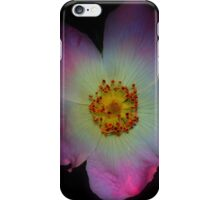 Dog Rose  iPhone Case/Skin