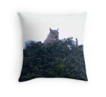squirrel! Throw Pillow