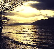 Gold and black - Loch Ness by jacqi