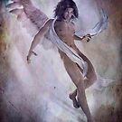 Angelus by Shanina Conway