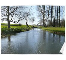 Springtime on a river bank in Norfolk Poster