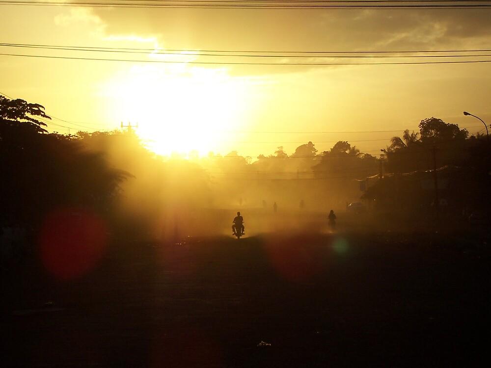 Sun Dust by Cammi