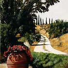 Tuscan Summer Road by Matthew  Bates