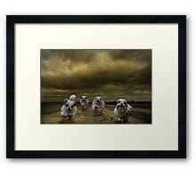 the four fluffy dogs of the Apocalypse Framed Print