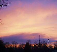 Sunset by reisalin