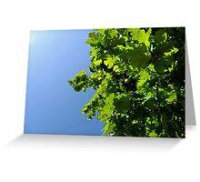 Lush Leafy Green Greeting Card