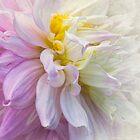 Soft Silk Dreams by Marilyn Cornwell