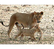 Behave Junior ! Photographic Print