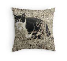 Warehouse Kitty  Throw Pillow