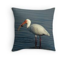 Ibis with Crab Throw Pillow