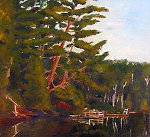 Gull Lake by splynch