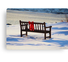 Red Bow White Snow Canvas Print