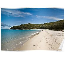 Putney Beach Landscape Poster