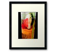Pimm's Framed Print