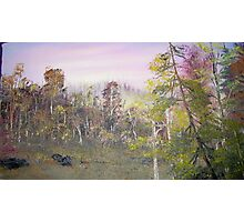 Otsego New York In Fall Photographic Print