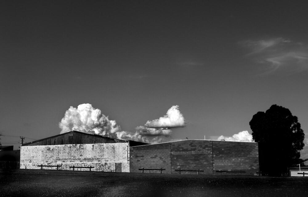 Carless by Bruce  Watson