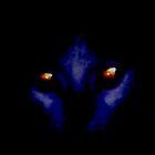 Intense Cat's Eyes by RockyWalley