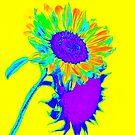 Neon Sunshine! by heatherfriedman