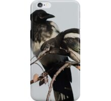 Magpie Siblings iPhone Case/Skin