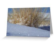 glistening snow Greeting Card